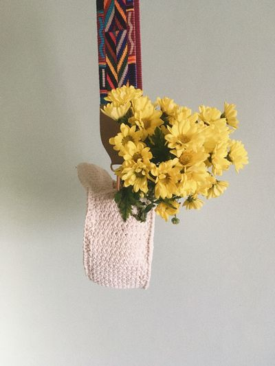 Close-up of yellow flower vase against white background