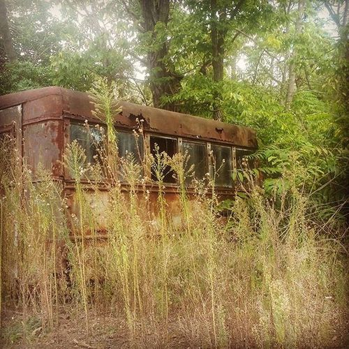 Abandoned ,Rust Lefttorust