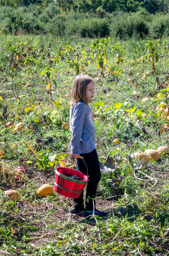 Full length of girl standing by basket on field