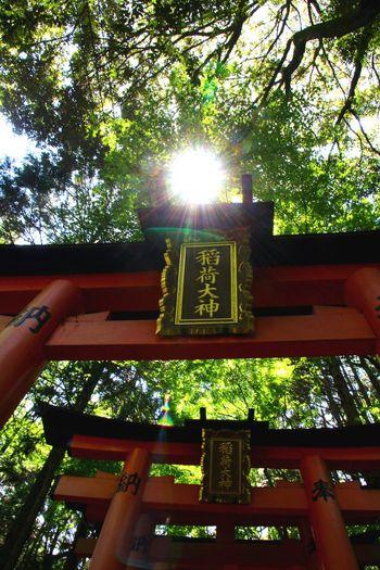 Taking Photos Japan Photography Kyoto