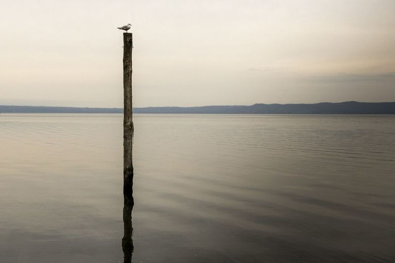 Wooden post in lake against sky