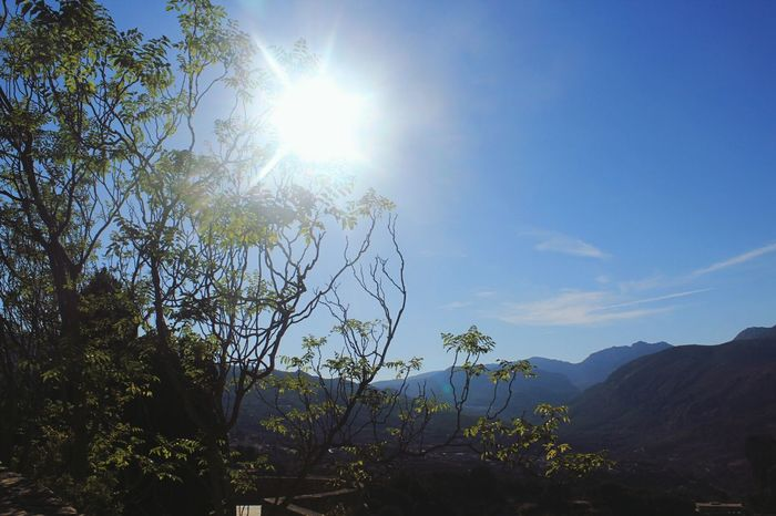 Old pic from summer vacations in Spain. Sun SPAIN Guadalest Outdoors Beauty In Nature Nature No People Sunlight Tree Sky Canonphotography Nature Photography Nature_collection Canon 1200D Nature Edited Travel Photography Travel Destinations Miles Away