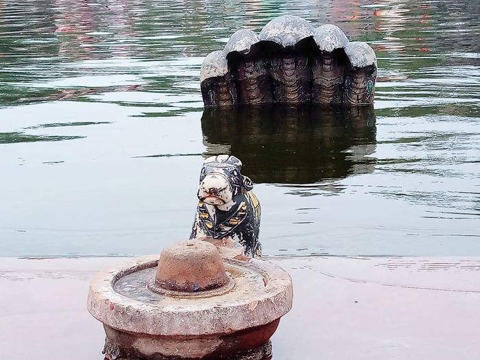 shiva Shiva Temple River Naagdevta Naag Dev Kshipra God Water Holycow Cow Shivling Shiva Lingam Shivalinga Shiva Statue Shivji Religion Religious  Hindu Temple Hinduism Hindu Gods Shankar Shiva Shiv Water Close-up Reflection Lake Statue Place Of Worship Spirituality Sculpture Wat Pho The Traveler - 2018 EyeEm Awards