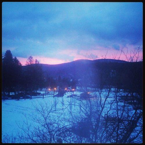 I'm back again at Honor's Haven Dahnmaster Viewfrommyroom February Snow stillsnowing training upstateny ny