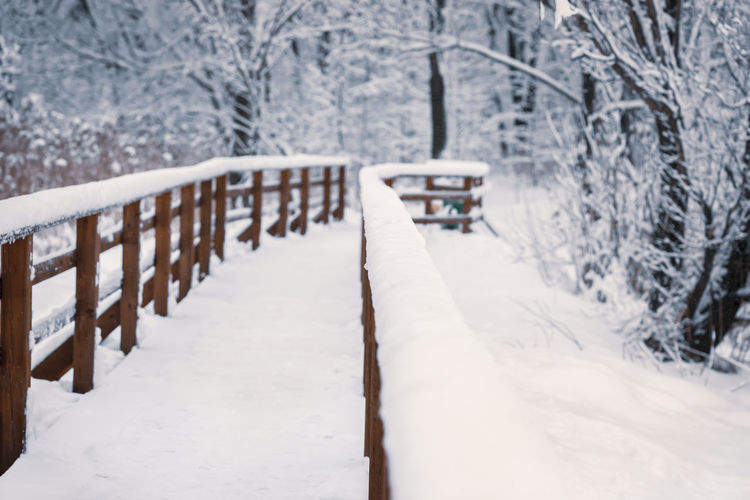 Wooden bridge in a winter snowy day, perspective view, without people. Natural winter landscape Snow Winter Cold Temperature Tree Plant Railing Nature Covering Frozen Forest Wood - Material No People Tranquility Outdoors Extreme Weather Snowing Bridge Winter Landscape Perspective Wooden Christmas New Year