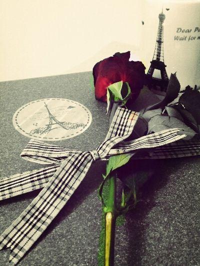 Paris Je T Aime Red Flower Mug Editing