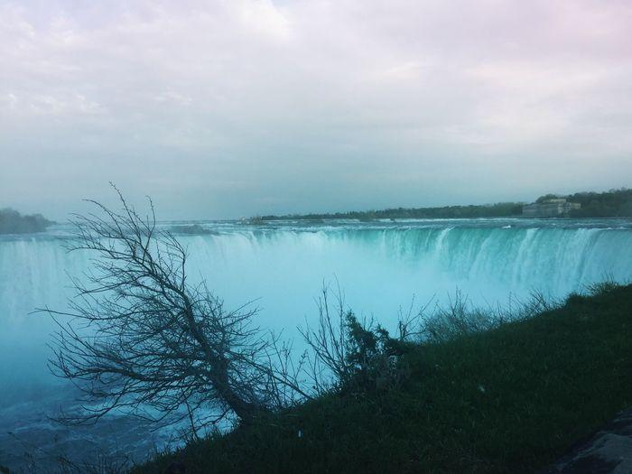 Falls. Tree Showcase May Iphonephotographyschool Iphonephotoacademy IPhoneography The Week Of Eyeem Water Waterfall #water #landscape #nature #beautiful The Great Outdoors - 2016 EyeEm Awards Niagara Falls