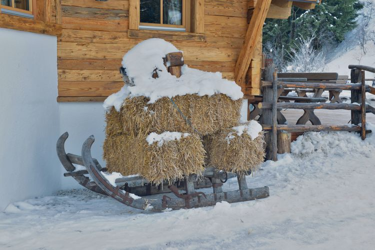 Sledge Wintertime Architecture Art And Craft Building Building Exterior Built Structure Cold Temperature Covering Creativity Day Frozen Human Representation Nature No People Outdoors Representation Snow White Color Winter Wood - Material
