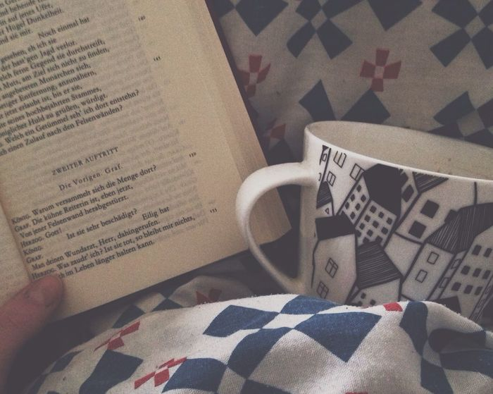 Cosy Day In Bed Literature Not Getting Up Reading