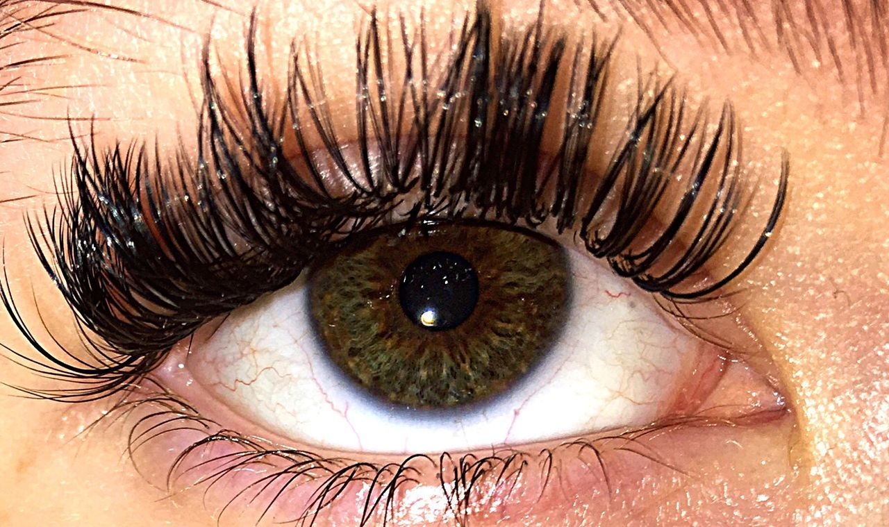human eye, eyelash, eyesight, human body part, eyeball, iris - eye, looking at camera, one person, portrait, close-up, real people, sensory perception, one woman only, people, adult, only women, adults only, hazel eyes, indoors, day