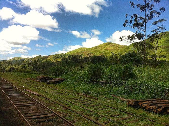 IPSLandscape SriLanka Origine Train