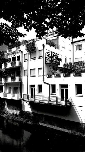 Water Architecture Building Exterior Tree Outdoors Built Structure No People Façade House Veneto Urban Residential Building Padovastreetart Padova_sono_io Padova Wallporn Wall Architecture City Composition Bestpic Blackandwhitephotography Black & White Photography Black And White Collection  Blackandwhitephoto