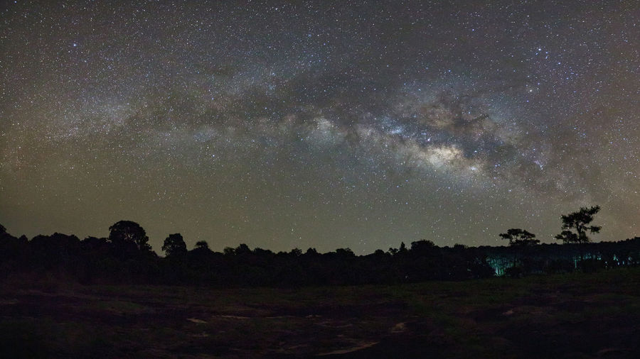 Sky Scenics - Nature Beauty In Nature Night Astronomy Tranquility Space Tranquil Scene Star - Space Nature Galaxy Star Plant Environment No People Landscape Tree Milky Way Land Star Field