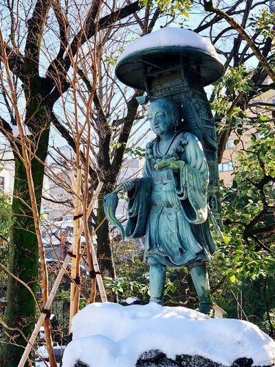 三蔵法師 玄奘 Statue Sculpture Human Representation Tree Day No People Green Color Outdoors EyeEmNewHere