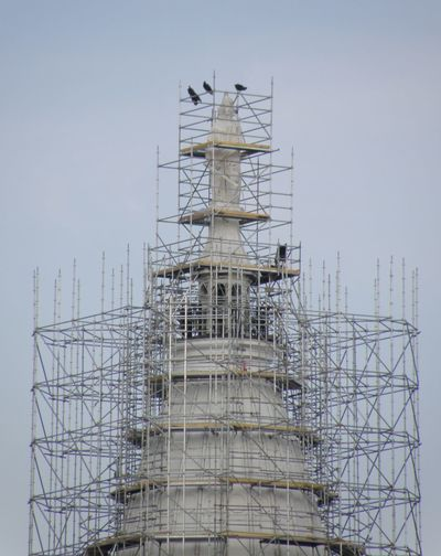 Birds on Tippecanoe County, Indiana Courthouse Birds Clear Sky Construction Site Courthouse Day Low Angle View Outdoors Repair Scaffolding Sky