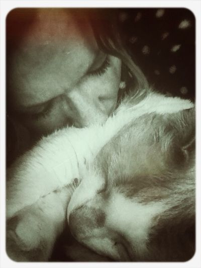 Me And My Cat Pizza Magaritha