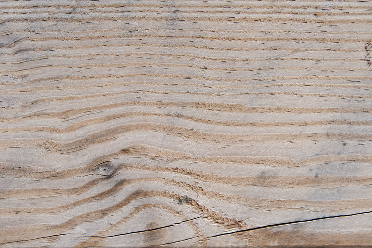 Backgrounds Pattern Wood - Material Textured  Full Frame No People Wood Natural Pattern Flooring Wood Grain Nature Brown Close-up Tree Plank Floorboard Timber Lumber Industry Material High Angle View Surface Level Blank
