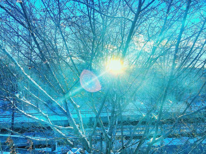 Sun trying to hide Sunbeam Beam Of Sun