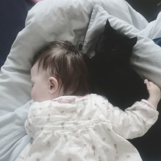 My beautiful baby sister x Toddler  Cuddlebuddy Kitten 🐱