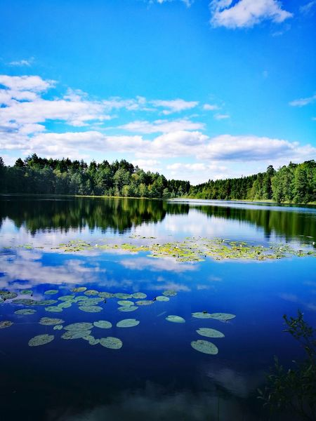 Reflection Lake Nature Water Beauty In Nature Cloud - Sky Tree Landscape Sky Outdoors Blue No People Warmia Poland Nature