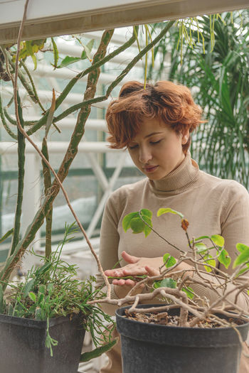 A beautiful plus size young woman takes care of plants green plants in the greenhouse.