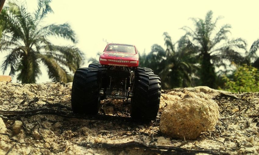 on track Car Cart Kart Track Monster Trucks Tree Sky Palm Tree Palm Frond Palm Leaf Coconut Palm Tree Sand Sandy Beach Hooded Beach Chair Shore