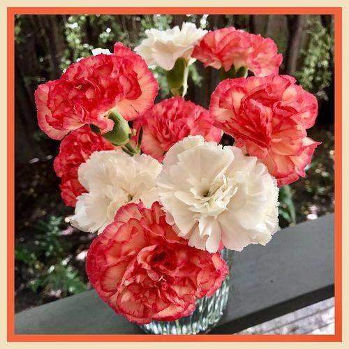 Flowers in vases 💐🍃💐 Flowers Of EyeEm EyeEm Best Shots Flowerphotography Bunch Of Flowers Flowers In Vases 💐🍃💐