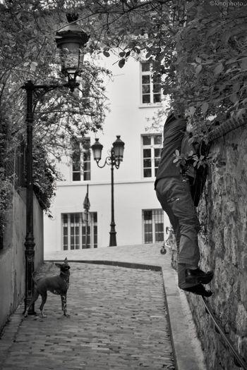 Paris Streetphoto_bw EyeEm Bnw Le Monte-en-l'air