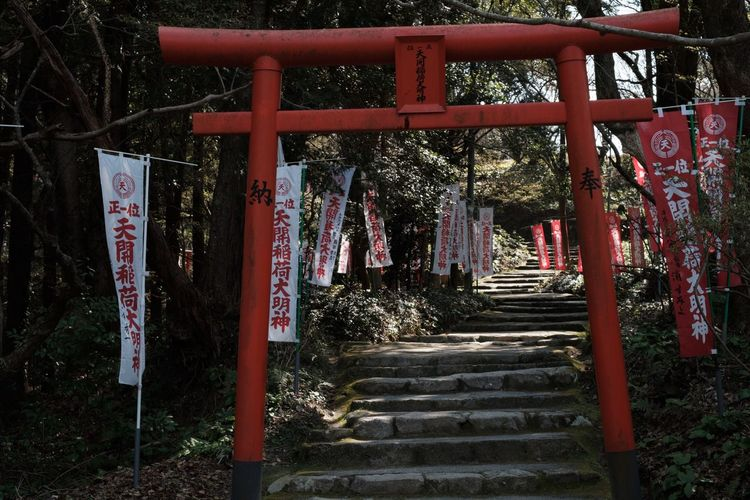Japan Red TORII