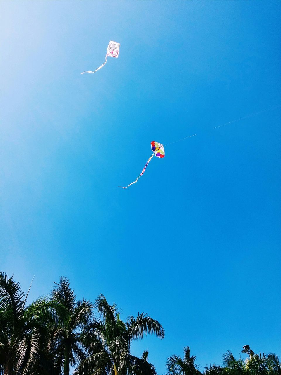 Kites Flying Against Clear Blue Sky