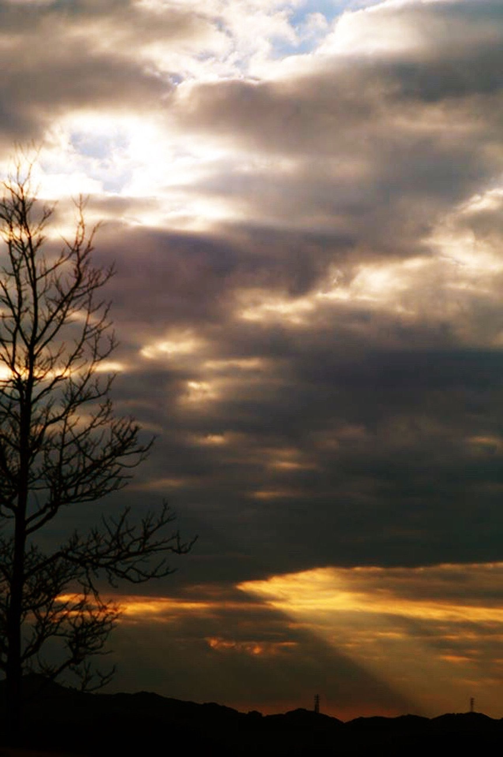 sunset, silhouette, sky, tranquil scene, scenics, cloud - sky, tranquility, beauty in nature, dramatic sky, cloudy, landscape, tree, nature, cloud, bare tree, idyllic, orange color, weather, moody sky, overcast