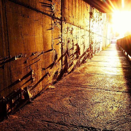 Correre per le Strade di Udine in Periferia al tramonto può essere una buona occasione per catturare dei bei riflessi di luce. Running in Udine you can shot a nicephoto with the gold sunlight picoftheday igersfvg igersudine @igersfvg beautiful photography maraton maratonina Friuli @il_fotografo @natgeotravel @natgeo