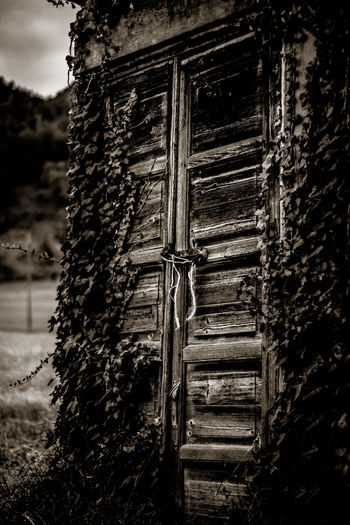 Abandoned Architecture Building Exterior Built Structure Damaged Deterioration Door Entrance Nature No People Old Ruined Wood - Material