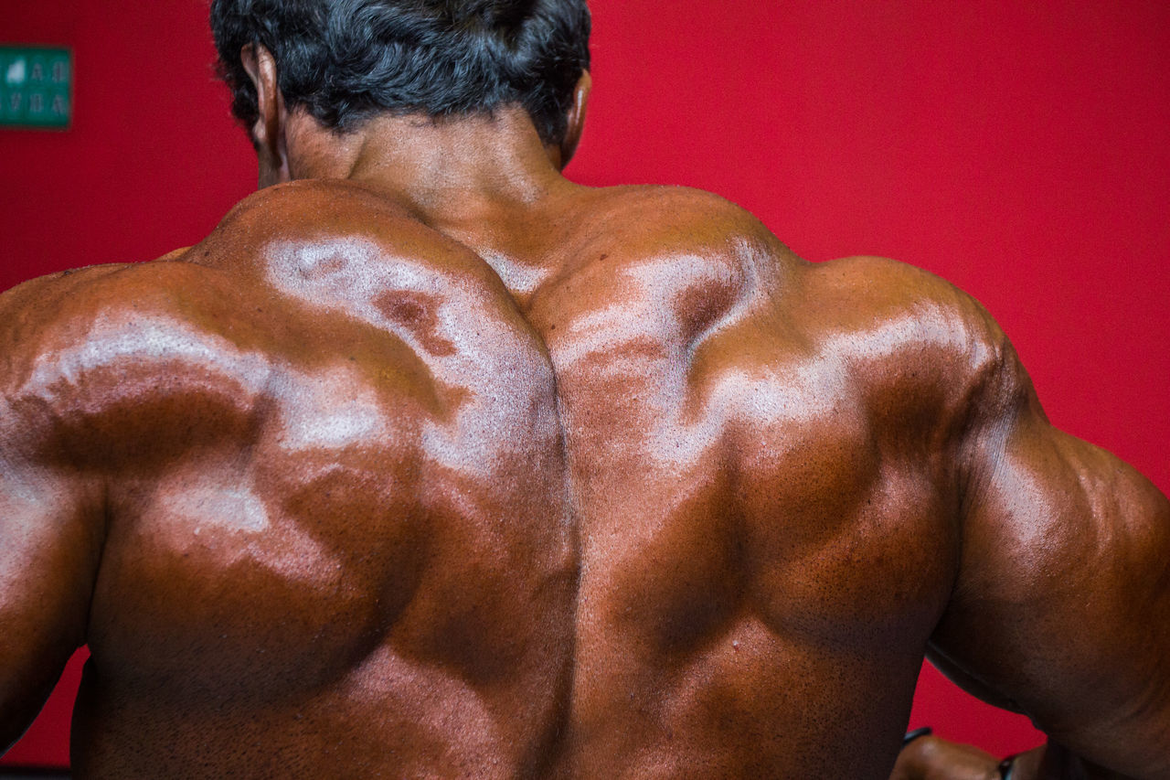 Adult,  Adults Only,  Athleticism,  Back,  Body Building