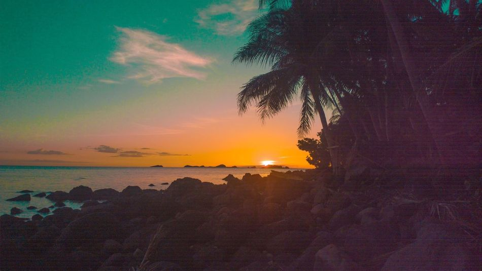 Hiking Sunset Sea Beauty In Nature Scenics Sky Water Palm Tree Idyllic Horizon Over Water Tranquility Tranquil Scene Tree Beach No People Outdoors Tropical Climate Day EyeEmNewHere Eyeem Photography Eyeem Philippines