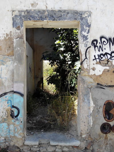 Graffiti Spray Paint Door Built Structure Architecture Street Art Day Building Exterior Window No People Outdoors Close-up Old Houses House Old Tree Nature Clear Sky Landscape Architecture House Ruins Ruins_photography Ruins Architecture Ruins Still Beautiful Ruins Of A Past Ruins View