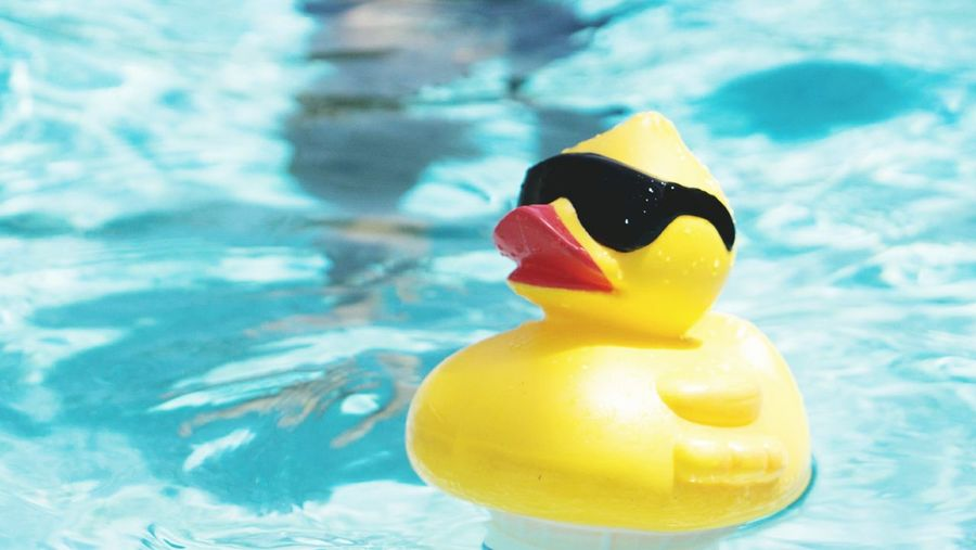 Start of Summer Yellow Swimming Pool No People Water Close-up Duckie Cool First Eyeem Photo