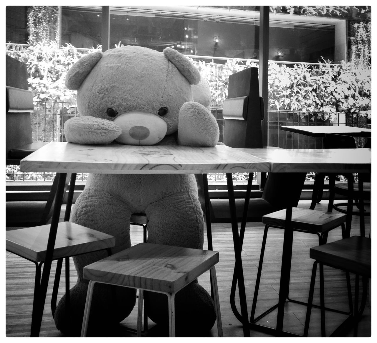 chair, table, indoors, home interior, teddy bear, stuffed toy, no people, day