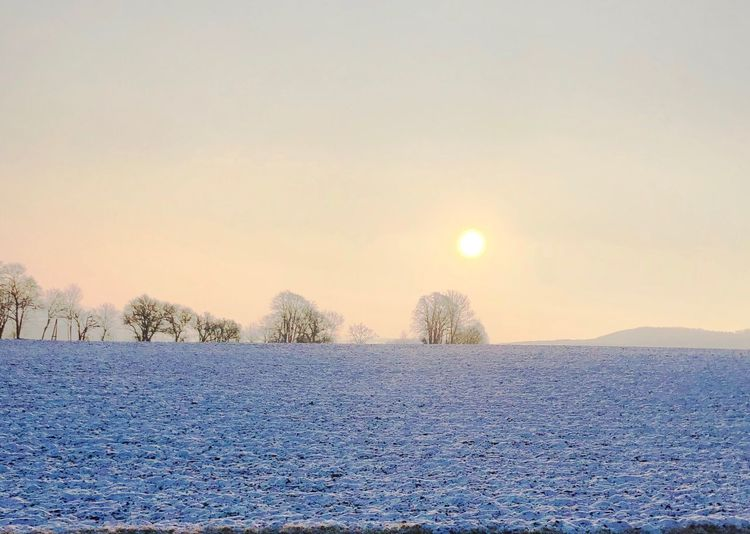 Frozen ❄️ Wienerwald  Frozen Nature Cold Temperature Winter Snow Sun Nature Beauty In Nature Tranquility Sky Outdoors Day Landscape