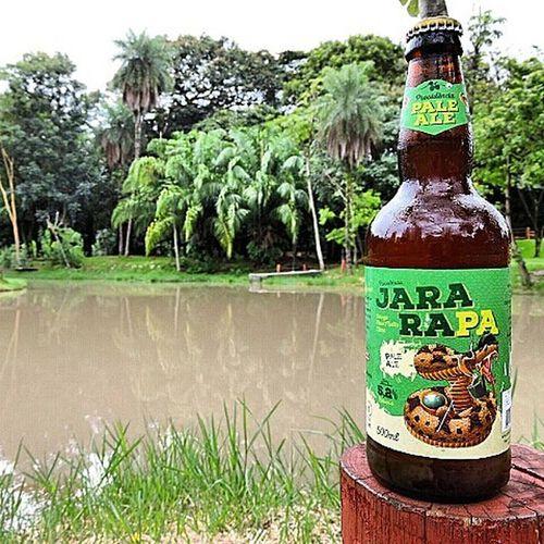 🍺 Providência Jararapa 🍺 Seu nome faz um divertido trocadilho com a cobra Jararaca e o estilo Pale Ale. De coloração cobre, espuma densa e notas de maltes marcante, o 58 IBUs se mantém bem inseridos, apresentando uma cerveja equilibrada e com presença de malte marcante. Aromas frutados, notas marcantes de caramelo, e leve aroma de lúpulo arrematam o conjunto. País: Brasil Graduação alcoólica: 5,2% Cervejaprovincia Jararapa 9ninebeers Cheers Cerveja Beer Beers Beergarden  Beeradvocate Beerlove Craftbeer Pivo Beerpics Beerlife Beergasm Beersnob Cerveza Craftbrew Birra Instabeer Instacerveja Beerstagram Craftbeerlife Cervejaartesanal Beergeek beertimebeertographybeerpornbeernerdbeeroftheday