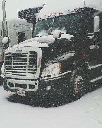 Colorado Snow Cold Days Snow ❄