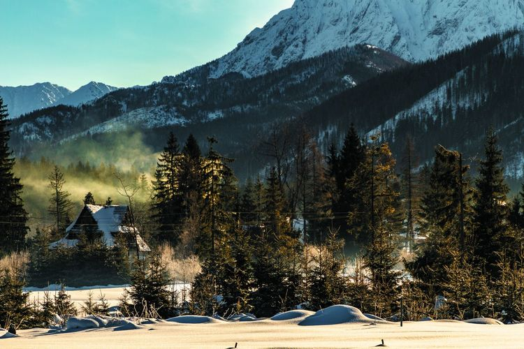 Snow Winter Cold Temperature Mountain Tree Plant Beauty In Nature Scenics - Nature Nature Tranquil Scene Tranquility Non-urban Scene Architecture No People Mountain Range Sky Building Exterior Built Structure Land Outdoors Snowcapped Mountain Pine Tree
