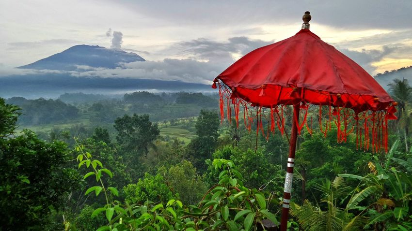 Beauty of Bali for my eyes. Bali Bali, Indonesia Green Mysterious Place Romantic Volcano Landscape Beauty In Nature Blue Day Landscape Mountagung Mountain Mysterious Nature No People Outdoors Palm Trees Red Scenics Sky Sunset Tranquility Tree Umbrella Volcano