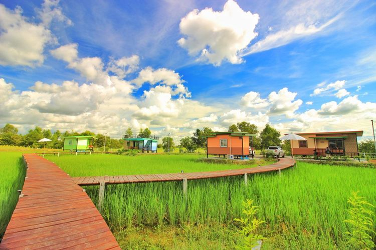 Scenic view of field and buildings against sky