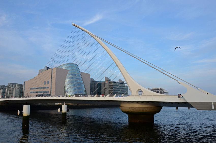 Celtic Dublin Grease Samuel Beckett Bridge Architecture Bird Bridge Day Harp Liffey Modern River Seagull Triangle Shape Waterfront