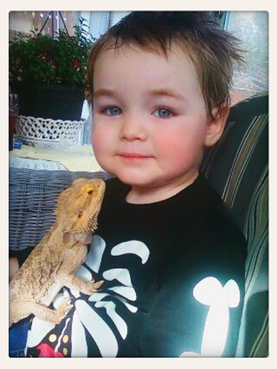 my son and our bearded dragon Max