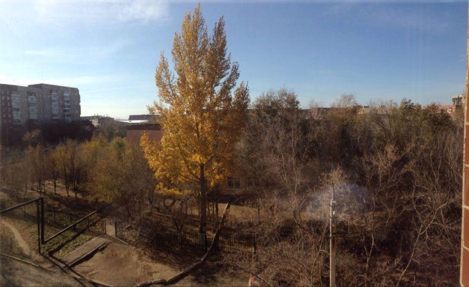 Autumn Sunny Nice Day Hello World