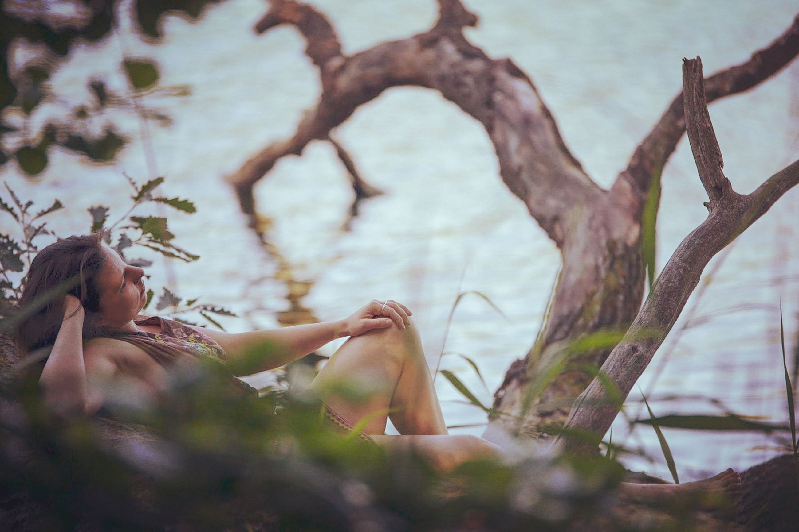 plant, tree, branch, nature, real people, one person, leisure activity, selective focus, day, lifestyles, women, outdoors, adult, beauty in nature, side view, trunk, sitting, full length, tree trunk