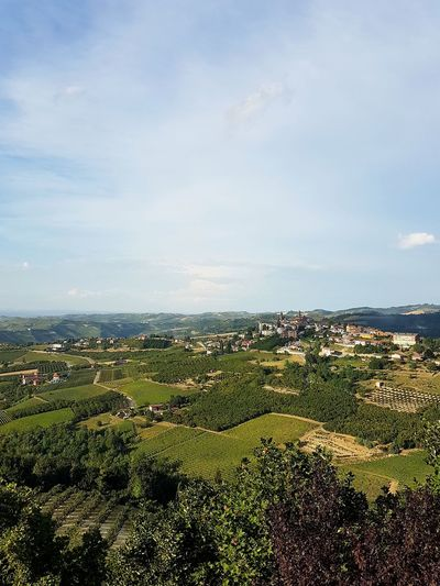 Landscape No People Sky Cloud - Sky Outdoors City Agriculture Day Tree Rural Scene Cityscape Nature Beauty In Nature Vineyards  Hills Scenics Summer Langhe Piedmont Italy Travel Destinations