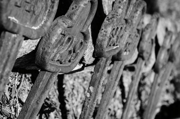 Outdoors Close-up Graveyard Beauty Cemetery Photography Nikon D5100  Black & White Numbers Gravemarkers Many Objects No People Day Black And White Friday
